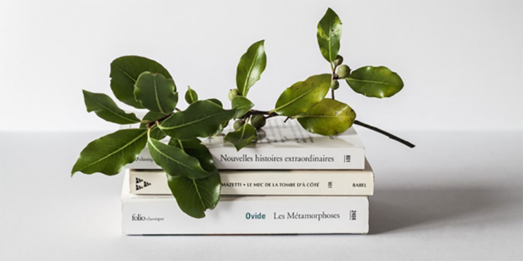 decorative fake twig with leaves sitting on top of books